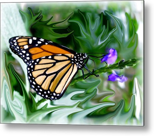 Monarch Butterfly Metal Print featuring the photograph Monarch Butterfly 4 by Jim Darnall