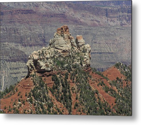 Rock Metal Print featuring the photograph North Rim Rock by Louise Magno