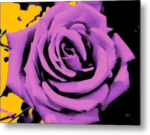 Rose Metal Print featuring the photograph Alchemy Rose by Lessandra Grimley