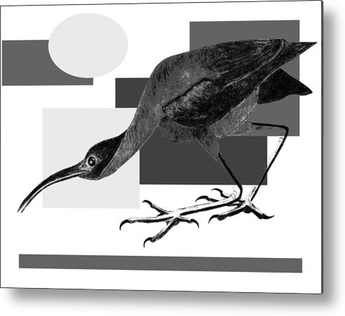 Bird Metal Print featuring the painting Shadow Dancing by Tess M J Iroldi