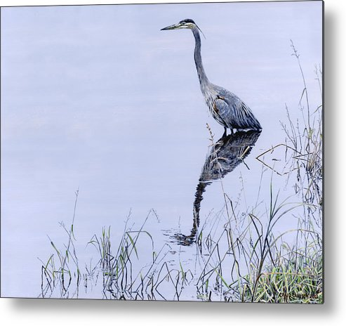 Heron Metal Print featuring the painting Marsh Reflections - Great Blue Heron by Craig Carlson