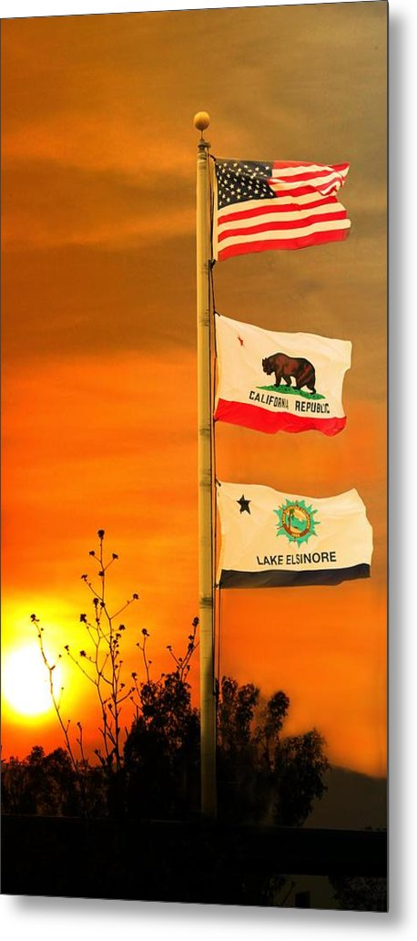 Metal Print featuring the photograph California Glory by Richard Gordon