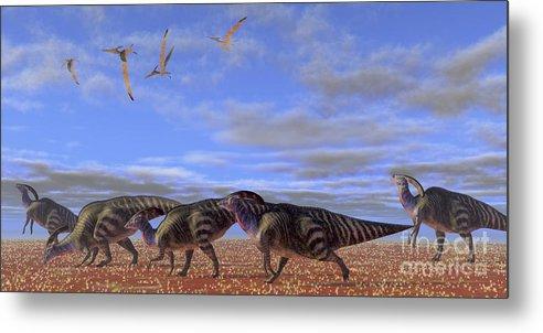 Parasaurolophus Metal Print featuring the digital art A Herd Of Parasaurolophus Dinosaurs by Corey Ford