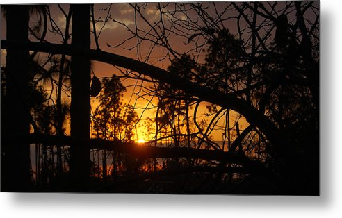 Sunset Metal Print featuring the photograph Louisiana Sunset by Heather S Huston