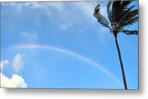 Palm Tree Metal Print featuring the photograph Rainbow Palm by Nicole I Hamilton