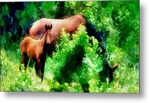 Horses Metal Print featuring the photograph Horse Family by Galeria Trompiz