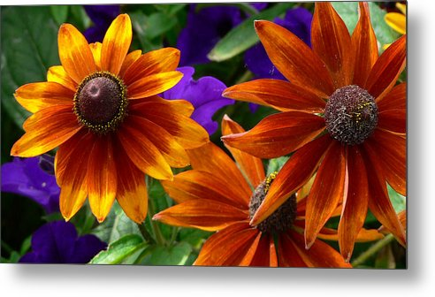 Flowers Metal Print featuring the photograph Layers Of Color by Larry Keahey