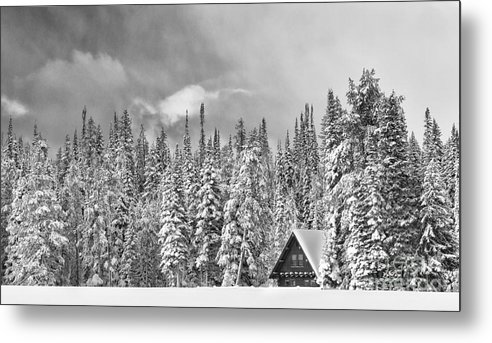 Black & White Metal Print featuring the photograph Taking Refuge - Grand Teton by Sandra Bronstein