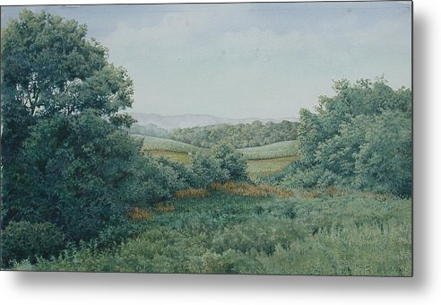 Landscape Metal Print featuring the painting Camillus Field by Stephen Bluto
