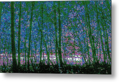 Landscape Metal Print featuring the photograph Looking Through The Trees by Lyle Crump