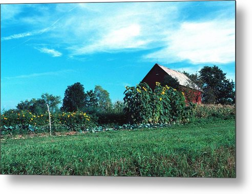 Barn Metal Print featuring the photograph 060507-30 by Mike Davis
