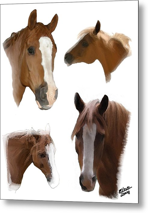 Arabian Horse Metal Print featuring the painting The Faces Of T by Elzire S