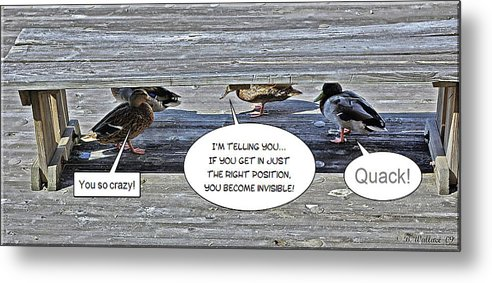2d Metal Print featuring the photograph Quack by Brian Wallace