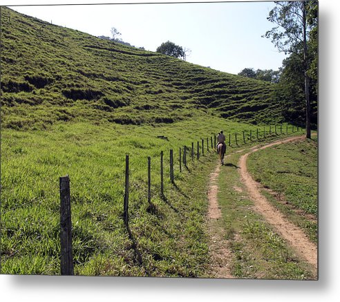 Road Metal Print featuring the photograph On The Road by Carlos Alvim