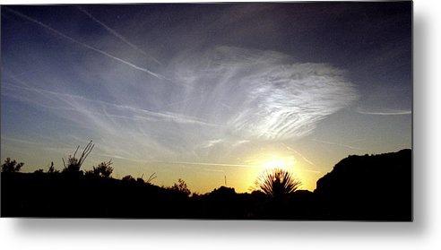 Arizona Metal Print featuring the photograph Yucca Sunset by Randy Oberg