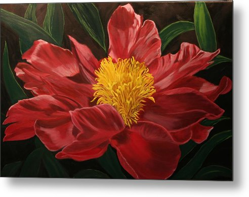 Floral Metal Print featuring the painting Peony Japonica by Robert Tower