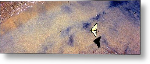 Water Metal Print featuring the photograph Butterfly And Sand 42 Db by Lyle Crump
