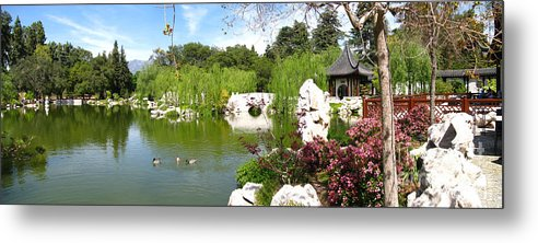 Digital Metal Print featuring the photograph Chinese Gardens by Bedros Awak
