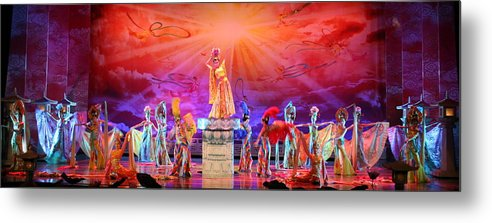 Tang Metal Print featuring the photograph Tang Paradise by Erika Lesnjak-Wenzel