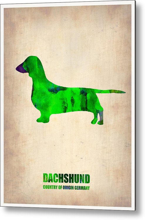 Dachshund Metal Print featuring the painting Dachshund Poster 1 by Naxart Studio