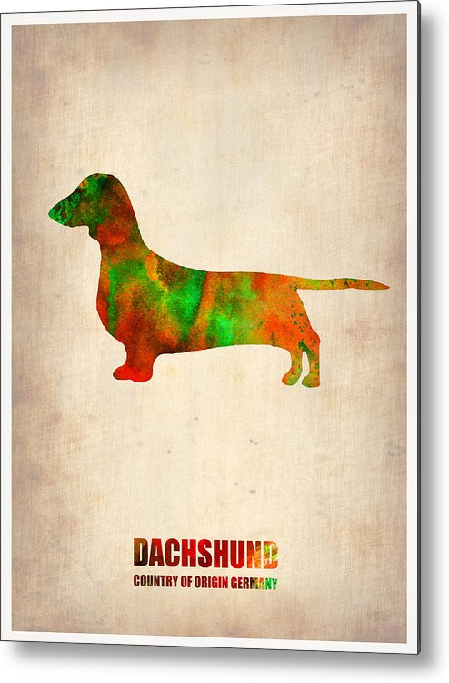 Dachshund Metal Print featuring the painting Dachshund Poster 2 by Naxart Studio