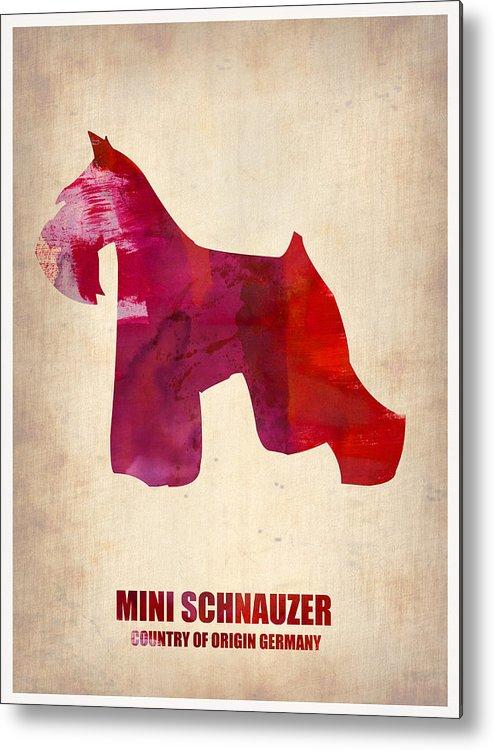 Miniature Schnauzer Metal Print featuring the painting Miniature Schnauzer Poster by Naxart Studio