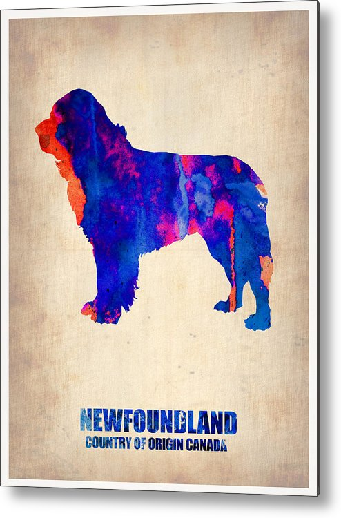 Newfoundland Metal Print featuring the painting Newfoundland Poster by Naxart Studio