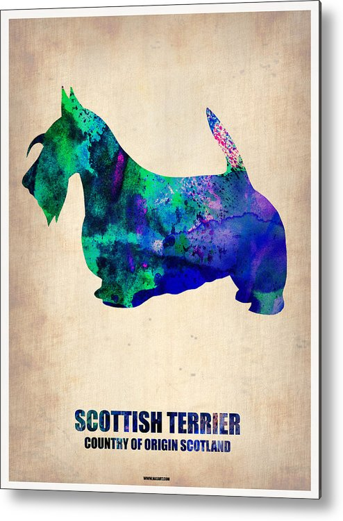 Scottish Terrier Metal Print featuring the painting Scottish Terrier Poster by Naxart Studio