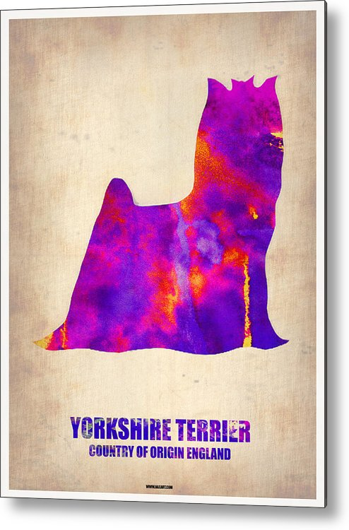 Yorkshire Terrier Metal Print featuring the painting Yorkshire Terrier Poster by Naxart Studio