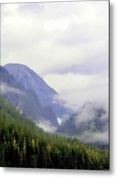 Mountains Metal Print featuring the photograph Purple Mountain Majesties by Mindy Newman