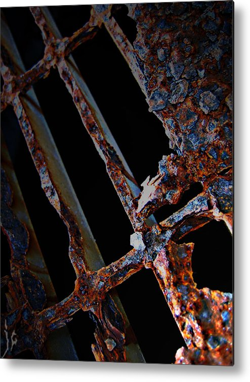Elm Metal Print featuring the photograph Rat In The Cage by Empty Wall