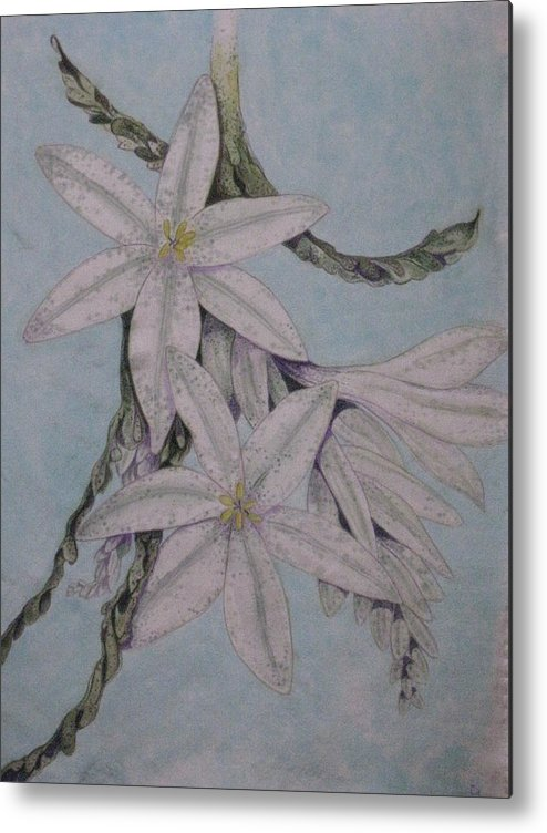 Flowers Metal Print featuring the painting Desert Lillie by David Kelly