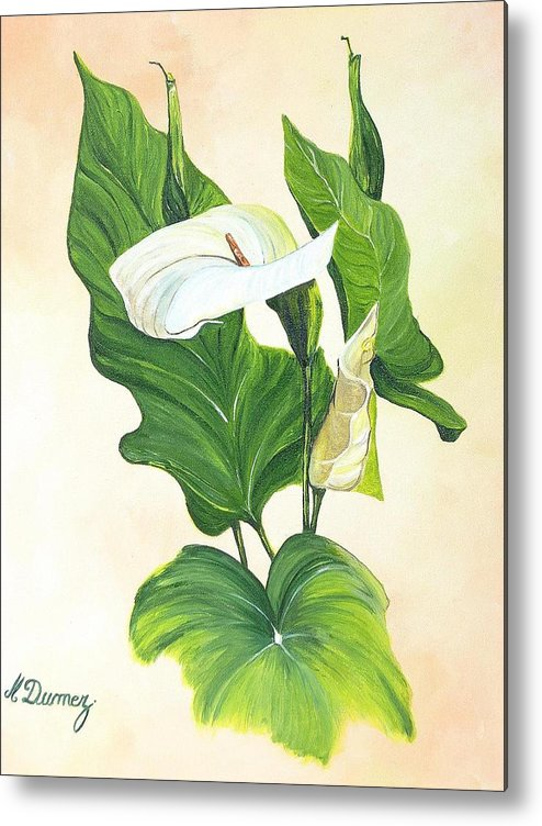 Flowers Metal Print featuring the painting Arums by Murielle Hebert