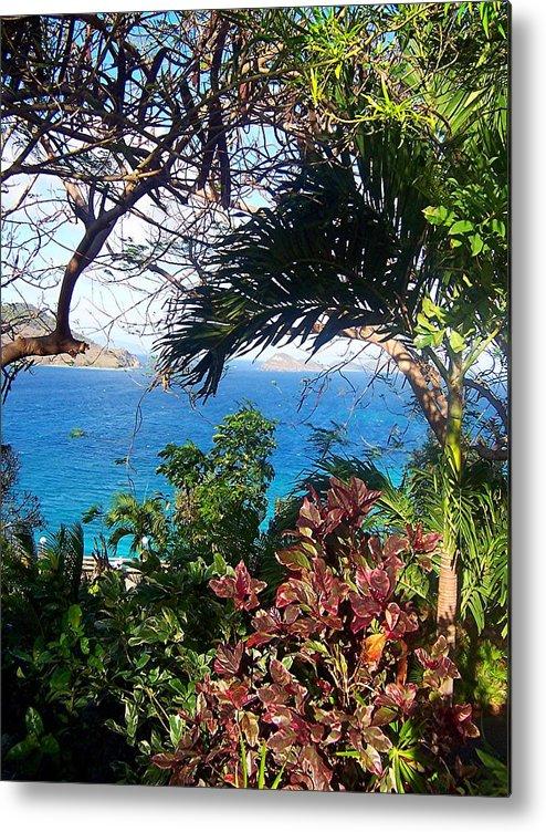 Water Metal Print featuring the photograph Blue Lagoon Overlook by Caroline Urbania Naeem