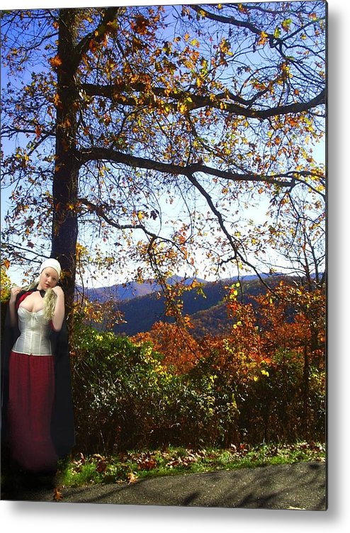 Fall Metal Print featuring the photograph Elegant Fall by Scarlett Royal