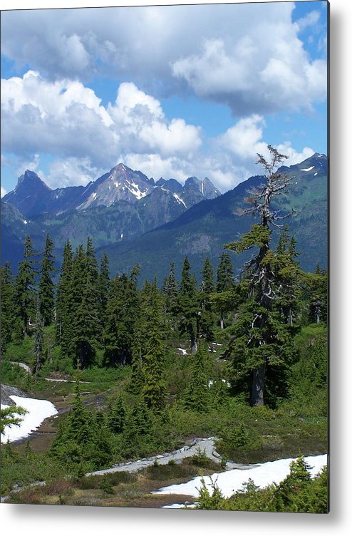 Cascades Metal Print featuring the photograph Fisher Chimney And Mt. Shuksan by Gene Ritchhart