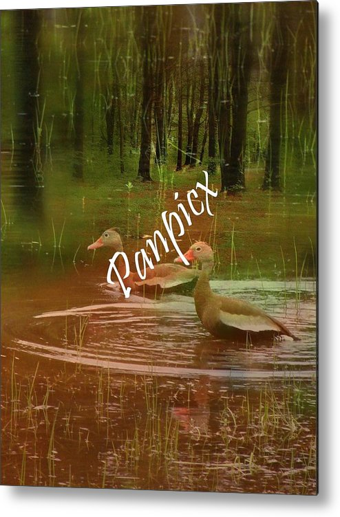Water Metal Print featuring the photograph Frolicking by Priscilla Richardson