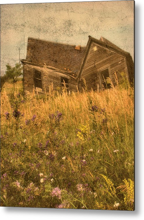 South Dakota Metal Print featuring the photograph Market Collapse by Tingy Wende
