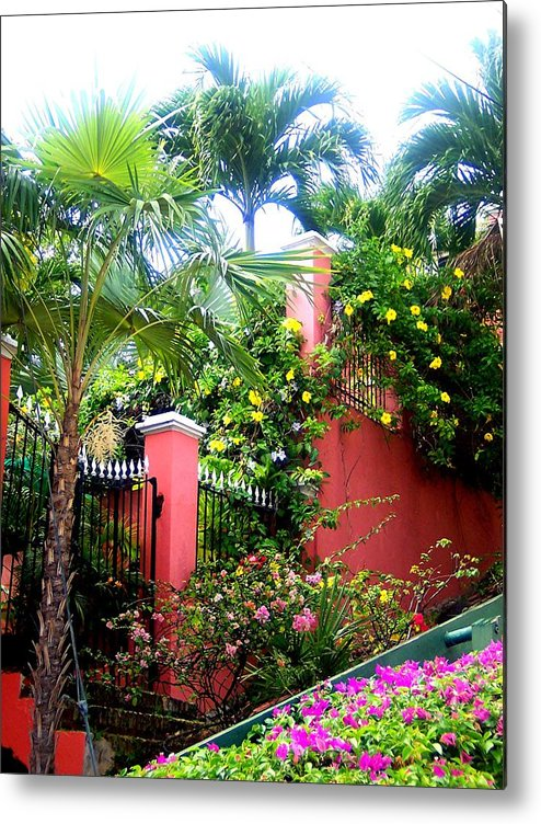 Metal Print featuring the photograph Red Wall And Palms by Caroline Urbania Naeem