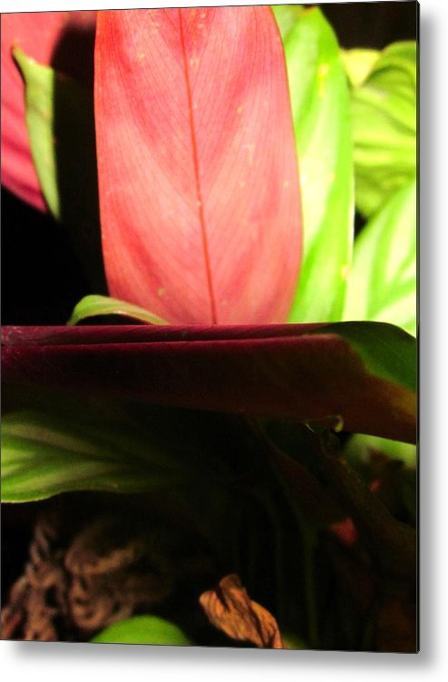 Metal Print featuring the photograph Say A Little Prayer by Miss McLean
