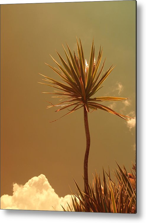 Abstract Metal Print featuring the photograph Skyward Bound by Florene Welebny