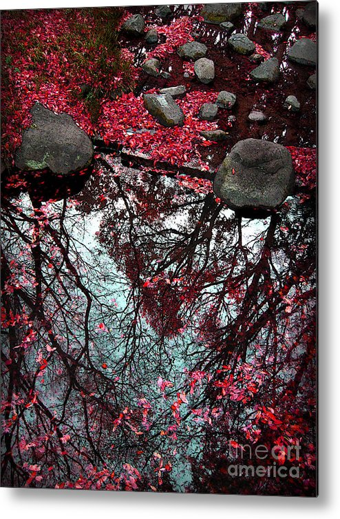 Heart Metal Print featuring the photograph The Heart Of The Forest by Eena Bo