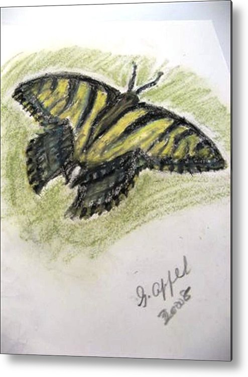 Tiger Butterfly Metal Print featuring the drawing Tiger Butterfly by Gloria M Apfel