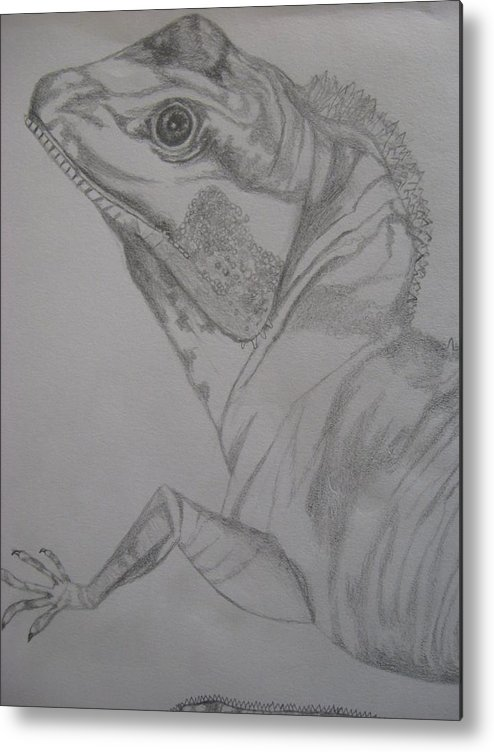 Dragon Metal Print featuring the drawing Waterdragon Vertical Close Up by Theodora Dimitrijevic