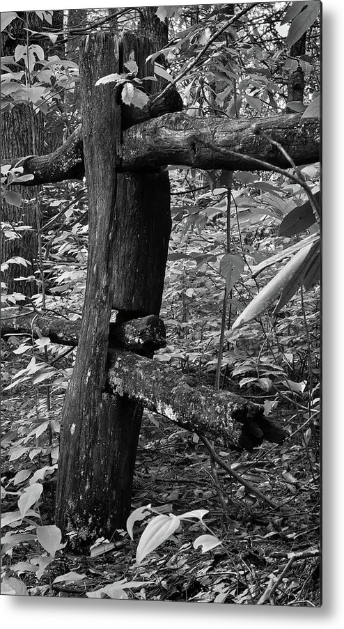 Black And White Photography Metal Print featuring the photograph The End Is Near by David Waldrop