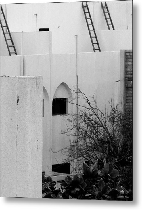 Building Metal Print featuring the photograph Arching Up by Farah Faizal
