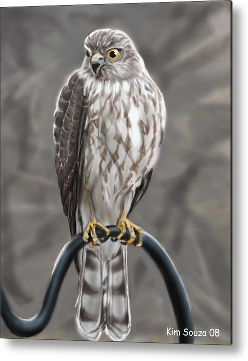 Birds Metal Print featuring the painting Hawk by Kim Souza
