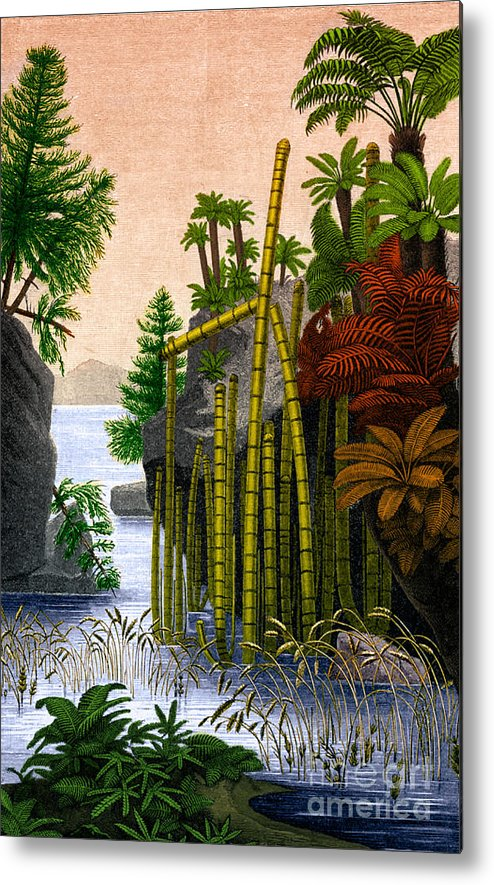 Science Metal Print featuring the photograph Plants Of The Triassic Period by Science Source