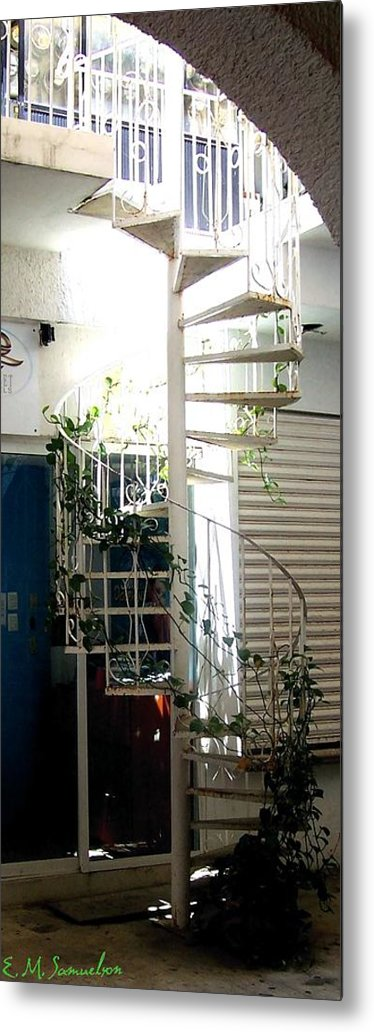 Plant Metal Print featuring the photograph White Stairs In The Sun by Elise Samuelson