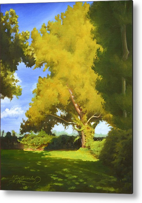 Sycamore Tree Metal Print featuring the painting Sycamore by Gary Hernandez